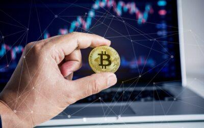 Dimensional over crypto currency: Is het een valuta of een beleggingscategorie?