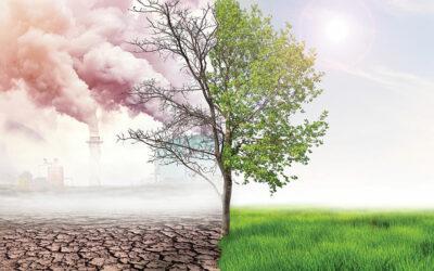 Klimaatverandering en marktprijzen